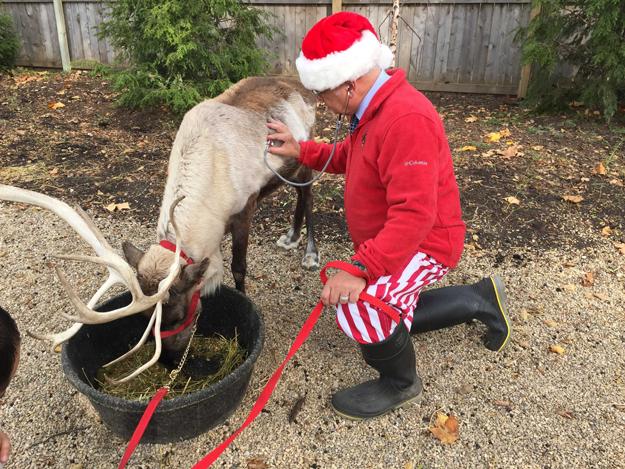 Santa-vet.png