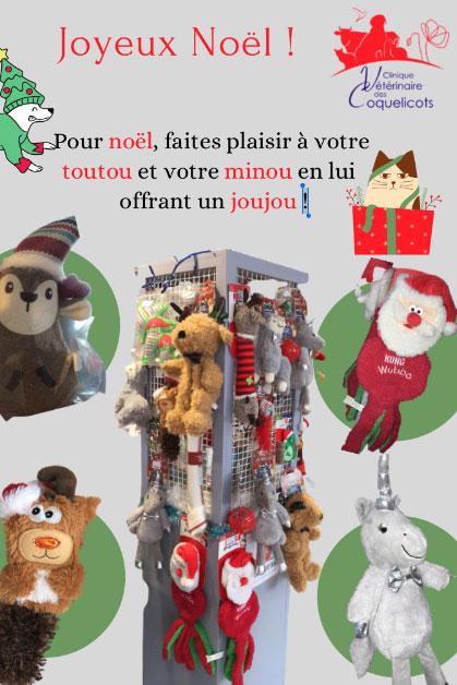 Clinique-veterinaire-des-coquelicots-Noel.jpg
